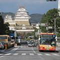 Photos: 姫路城の下を
