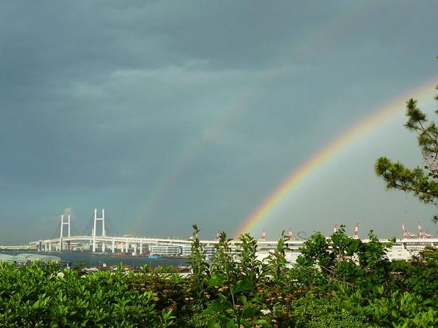 写真: 大きな虹@港が見える丘公園