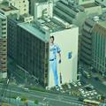 写真: 横浜ランドマークタワースカイガーデン