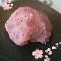 写真: 桜おはぎ