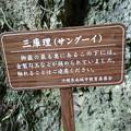 斎場御嶽(せーふぁうたき)