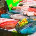 写真: いゆ(魚)