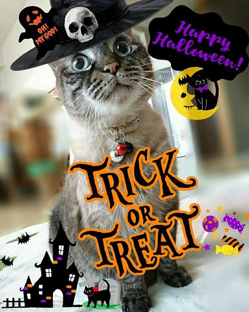 Happy Halloween♪