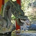 Photos: 北口本宮冨士浅間神社