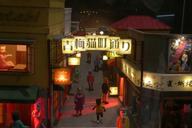 Photos: 昭『和』の猫の町