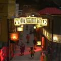 昭『和』の猫の町