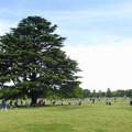 Photos: 休日の公園