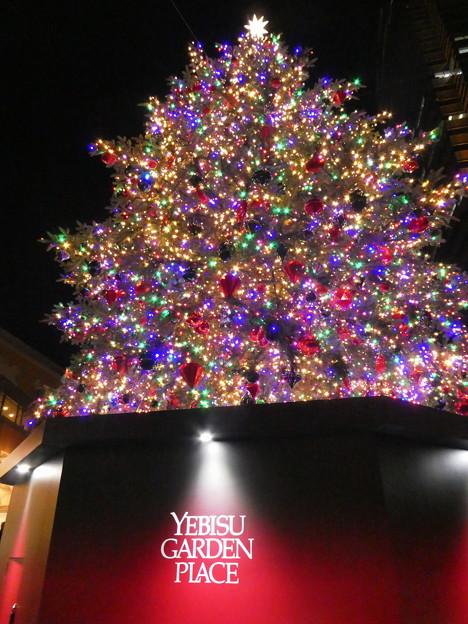 恵比寿ガーデンプレイスのツリー