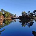 Photos: 水辺