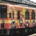 Photos: 肥薩おれんじ鉄道HSOR-100形