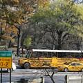 Photos: スクールバス