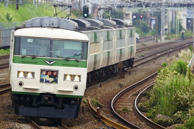 185系・踊り子131号(9131M)
