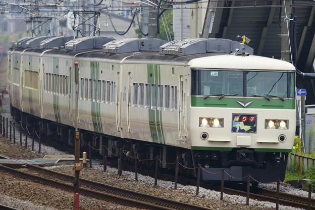 185系・踊り子109号(8029M)(3)