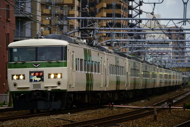 185系・踊り子110号(8030M)(3)