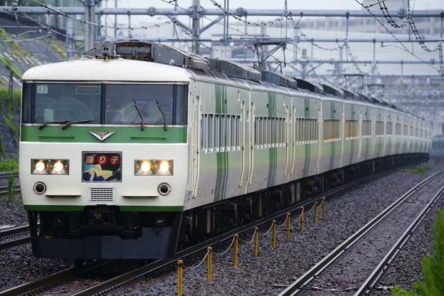 185系・踊り子117号(9037M)(3)
