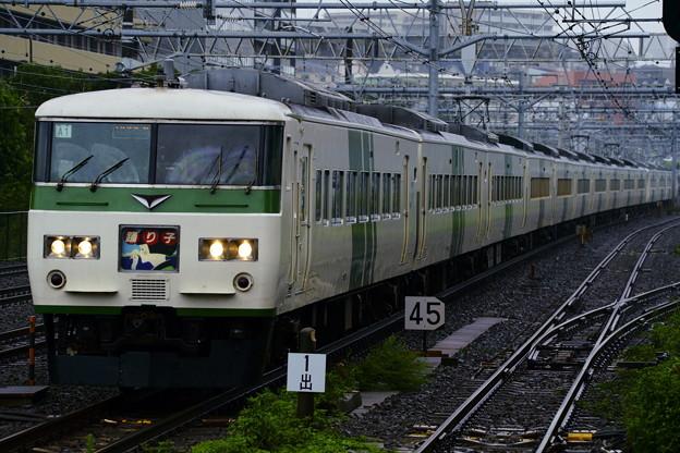 185系・踊り子115号(3035M)(6)