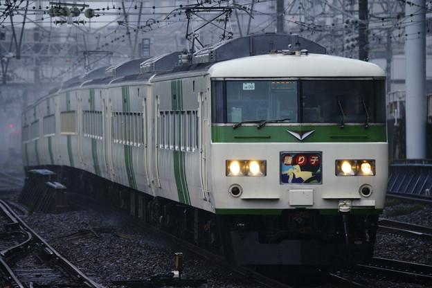 185系・踊り子102号(9022M)(2)