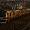 E217系(23)