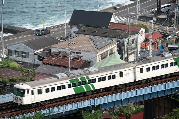185系・踊り子110号(8030M)(6)