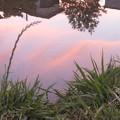 田んぼの中の空
