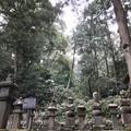 Photos: 稲葉氏一族の墓