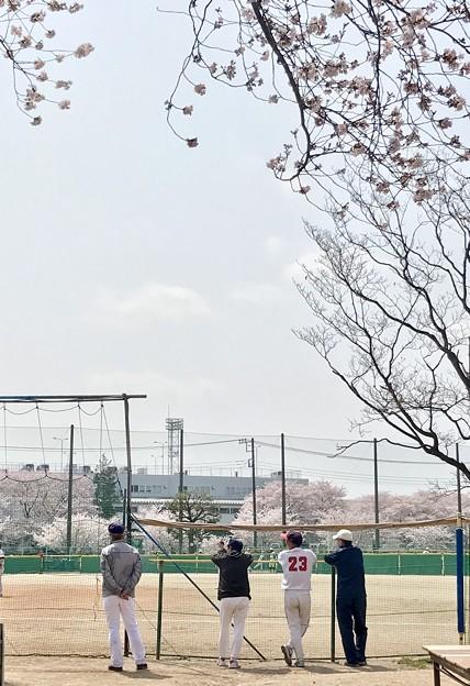 Photos: 生涯スポーツ