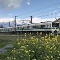Photos: 白い小田急