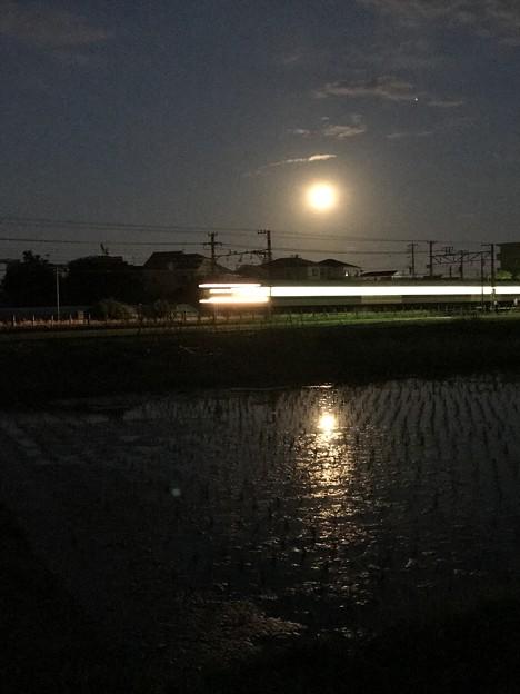 Photos: 苺月夜に走る