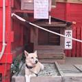 Photos: ホギちゃん