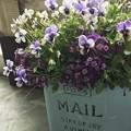 Photos: MAIL BOX