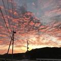 Photos: 夜の次に朝が来る