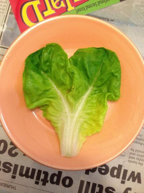 ハートのサラダ菜
