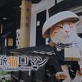 写真: 旅猫ロマン