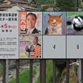 Photos: 知事選