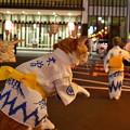 Photos: 木曽おどりみいこ