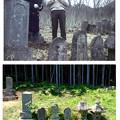Photos: 多々良放庵の死体発見場所