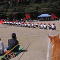 福島小学校 運動会