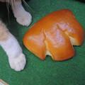 猫の手パン