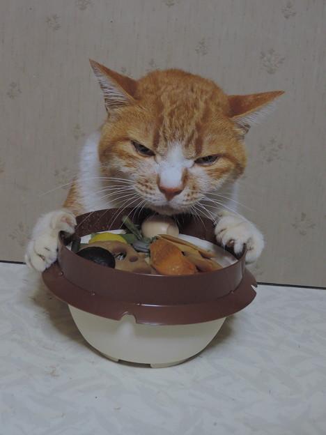 山菜釜めし 香りだけ。