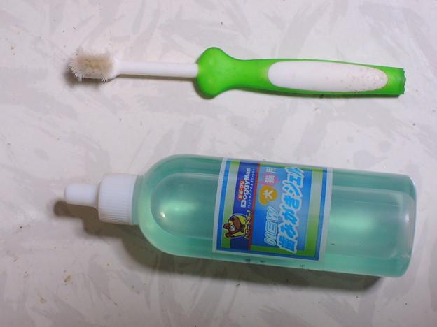みいこの歯ブラシ、歯磨き