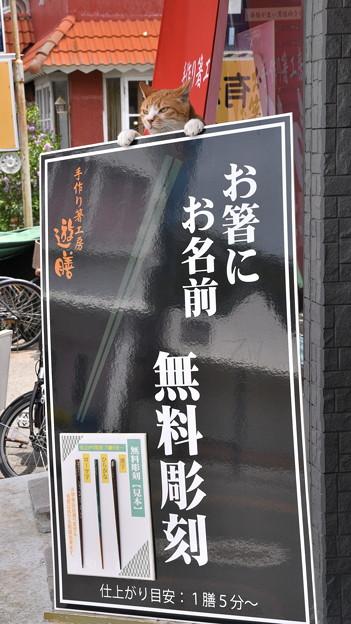 Photos: 清里手作り箸工房「遊膳」さん