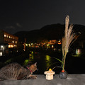 Photos: 中秋の名月
