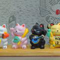 Photos: 七福猫
