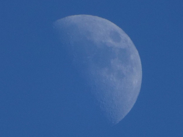 Photos: お月様