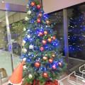 Photos: もうすぐクリスマス