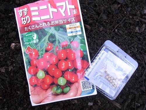 【園芸】すずなりトマトの種|2018年[春]