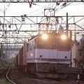 写真: EF65-2076 3071レ