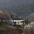 E257-500 ホリデー快速富士山
