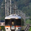 Photos: 373系 ワイドビューふじかわ