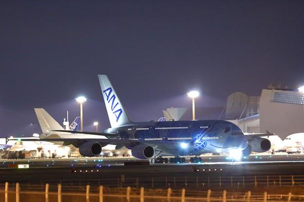 A380フライングホヌ